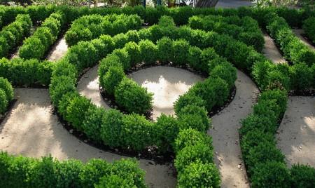 Poze Gradina de flori - Labirint din gard viu