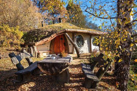 Poze Terasa - terasa-rustica-casa-ecologica-hobbit.jpg