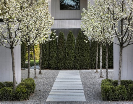 Poze Gradina de flori - Livada de peri intr-o gradina moderna