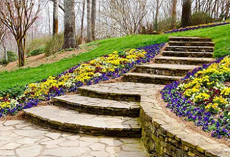 Poze Gradina de flori - Gradina cu alei si trepte din piatra, iarba verde si flori multicolore