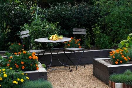Poze Gradina legume - Plante cu flori in gradina de legume