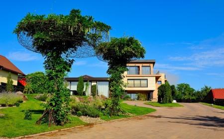 Poze Gradina de flori - Gradinarit si arta: plante cataratoare pe un arbore artificial