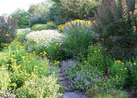 Poze Gradina de flori - Vara in gradina rustica