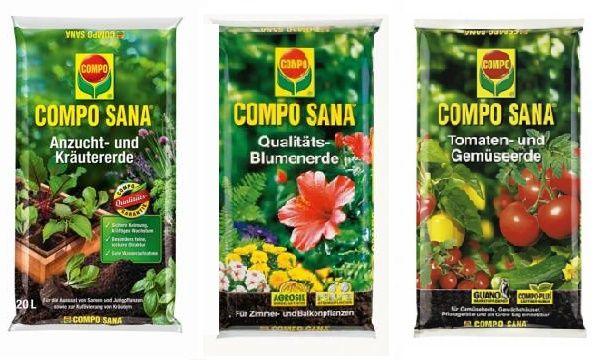 Cum sa cultivi plante aromatice
