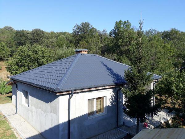 Avantajele unui acoperis verde: ce aduce in plus fata de unul conventional?