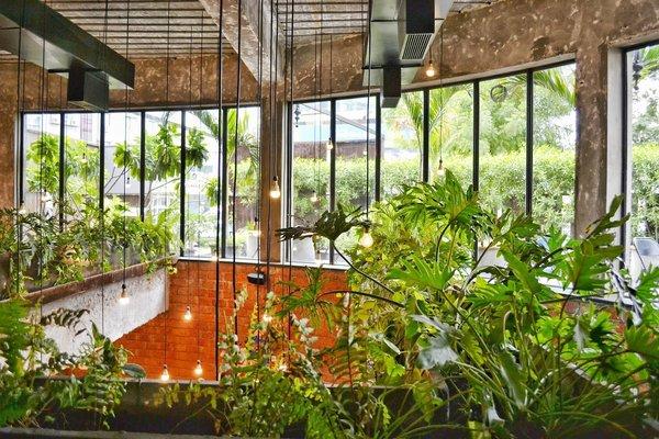 Amenajarea balconului. Cum sa cresti legume in apartament