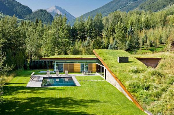 Iarba verde de pe... casa sau cum poate fi o constructie in armonie cu natura - galerie foto