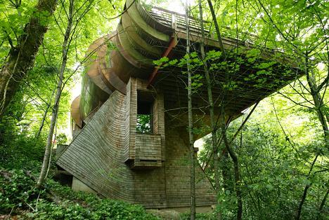 Arhitectura contemporana... printre copaci