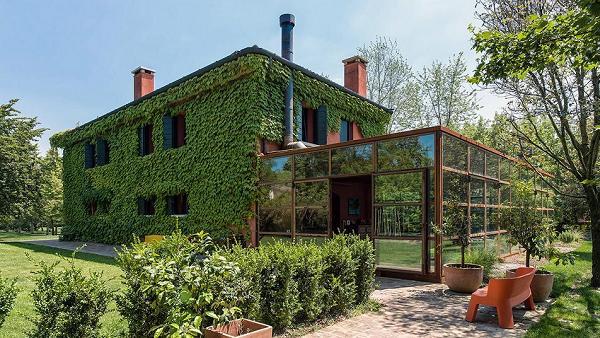 Iedera, otel, sticla: casa care se contopeste cu peisajul - Galerie foto