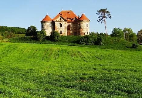 Pekri Ozd Kalesi (Castelul Pekri Ozd)