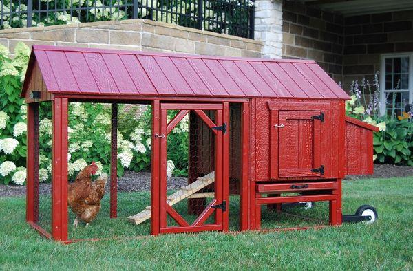Cresterea pasarilor in curte sau gradina - idei de cotete practice si frumoase