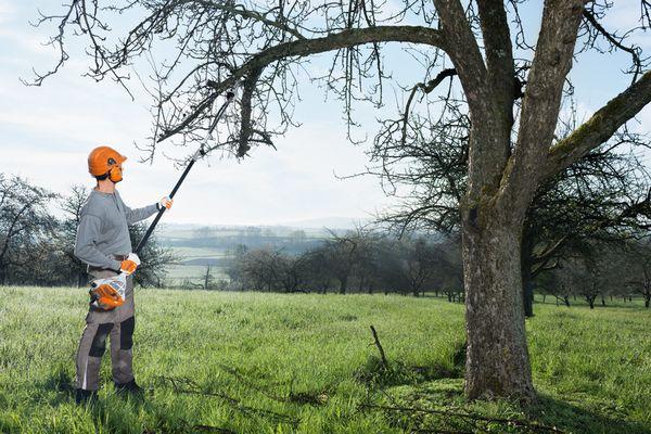 Un nou utilaj inovativ pentru ingrijirea pomilor isi face loc pe piata romaneasca