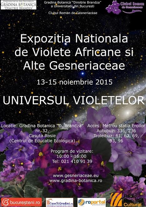 Te invitam in universul violetelor!