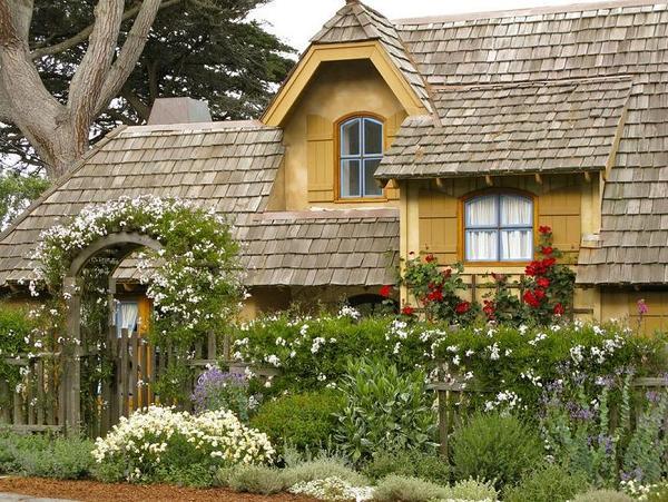 Gard acoperit cu o multime de flori rustice