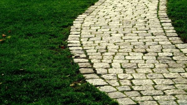 Trucuri pentru pavarea aleilor din curte fara a elimina spatiul verde