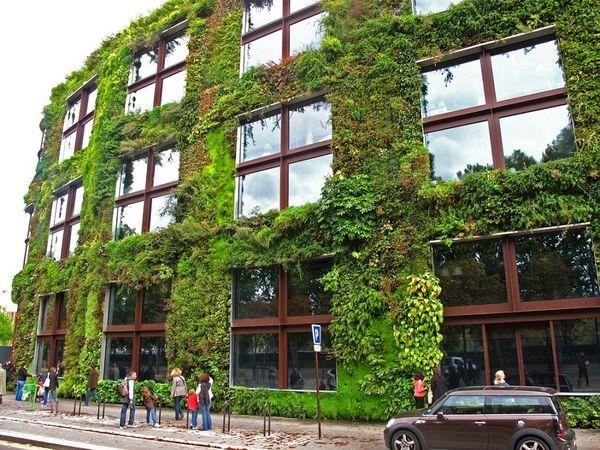 Gradina verticala - arta arhitecturii organice