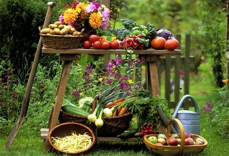 Incepe sezonul legumelor