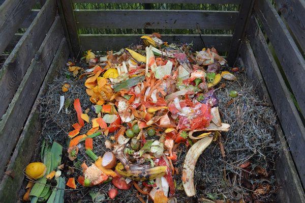 Compostul imbunatateste gratuit solul din gradina ta!