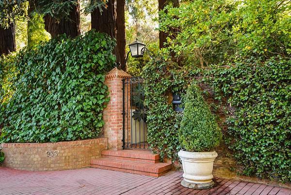 Idei originale pentru o curte intima - gard mascat cu plante cataratoare si plante cu flori