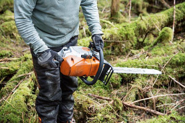STIHL aduce pe piata o noua unealta destinata domeniului forestier