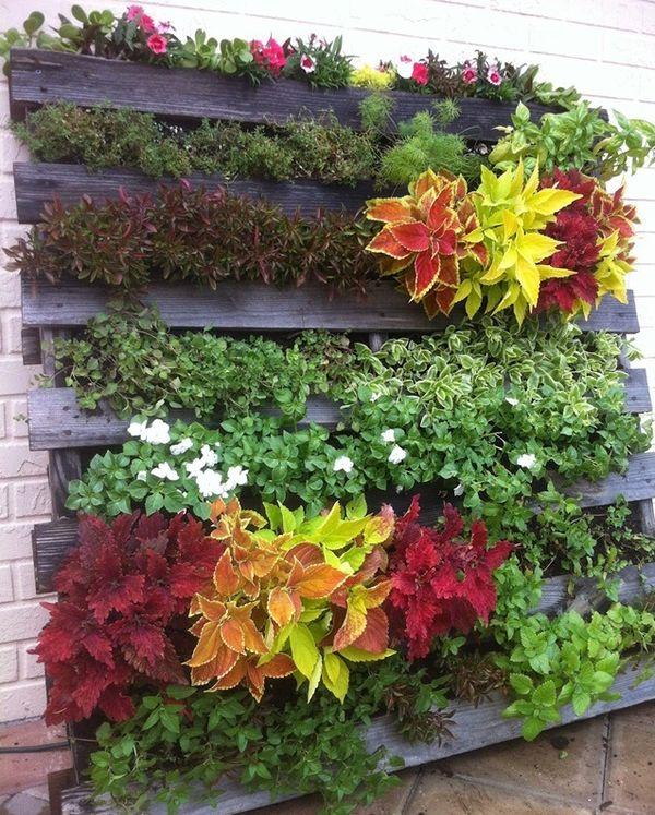 Cum sa construiesti o mica gradina verticala recicland un palet din lemn