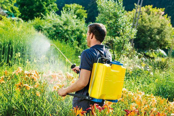 Cum alegi pompa de stropit sau atomizorul potrivit pentru gradina ta?