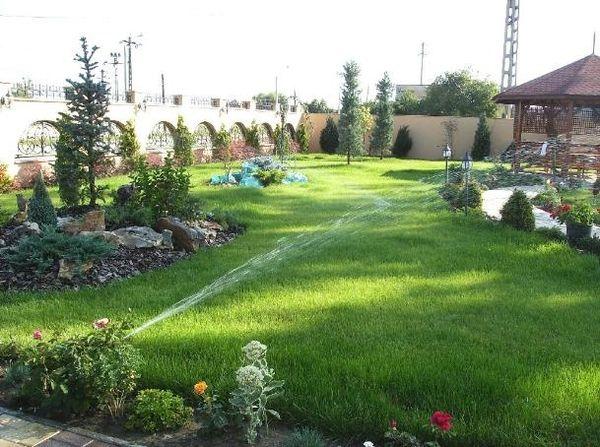 Intretinerea gazonului - tunderea, irigarea, fertilizarea si aerarea peluzei