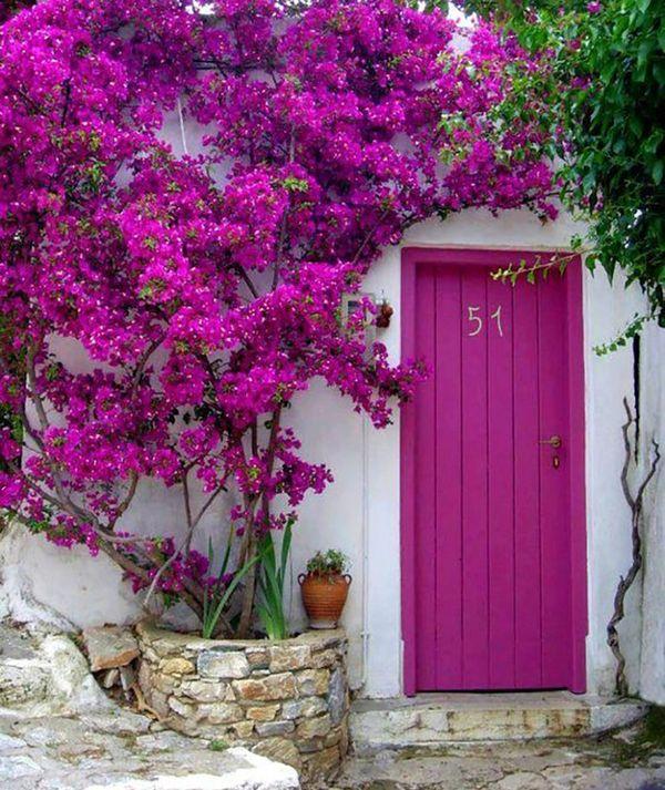 7 culori mai putin obisnuite pentru usa de la intrare. Care este preferata ta?