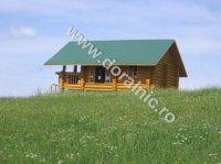 cabane din lemn 19891