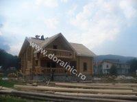 case lemn 20071