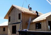 case lemn 29834