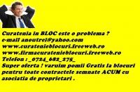 Lupulescu Robert II-curatenie blocuri 23045