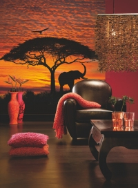 FOTOTAPET NATURA - APUS DE SOARE IN AFRICA - FOTOTAPET NATURA - APUS DE SOARE IN AFRICA