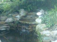 piatra naturala 11687