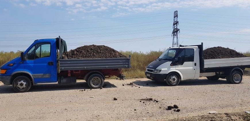 PAMANT NEGRU VEGETAL DE PADURE PENTRU GAZON FLORI GRADINA BUCURESTI ILFOV