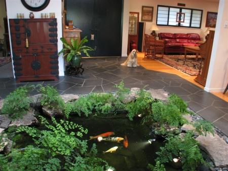 Iaz de interior cascada si iaz iazuri for Koi pond quezon city