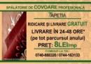 TAPETIA Brasov 6720